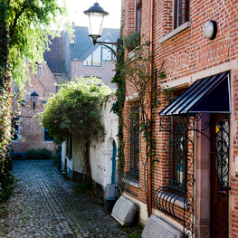 Large Beguinage